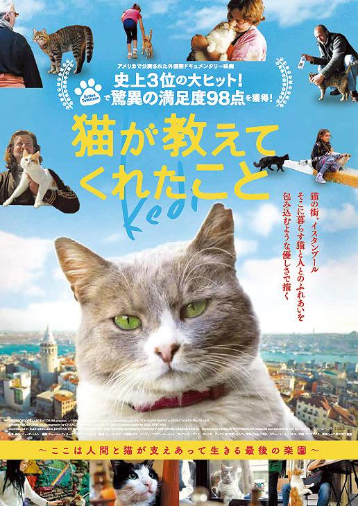 猫が教えてくれたこと【字幕版】2週間限定